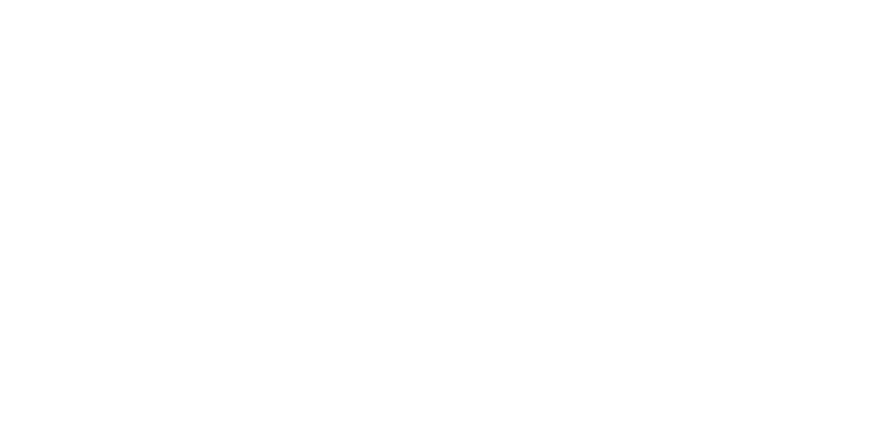 Family & Newborn Photographer, Emily Alyse Logo